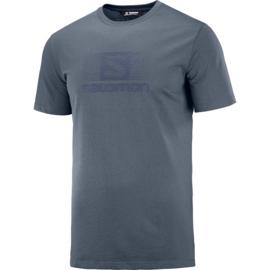 Salomon Blend Logo SS TEE M férfi póló
