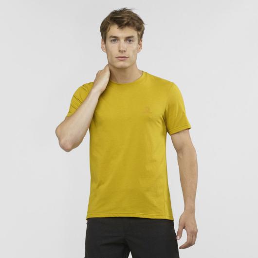 Salomon Explore Blend SS TEE M férfi póló