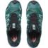 Kép 5/7 - Salomon XA PRO 3D v8 GTX W vízálló női terepfutó cipő